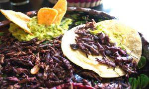 EL TURISMO  …Y la Gastronomía.